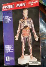 Skilcraft Visible Man Science Model Kit 74622 Anatomy