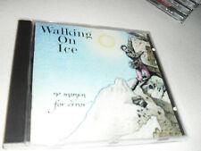 Walking on ice - no margin error / Cyclops Prog 009 CD RAR Made in Canada