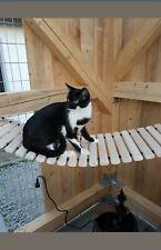 Katzenhängebrücke Catwalk Katzenbrücke Kletterleiter Katzen Hängebrücke Holz 130