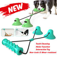 2020 Upgraded Dog Molar Bite Toys with Double Suction Cups Pet Chew Toys i