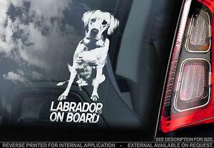 Labrador Retriever - Car Window Sticker - Golden Lab Dog on Board Sign  - TYP1