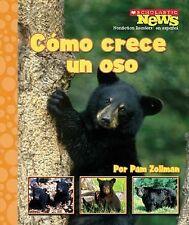 Como Crece Un Oso = A Bear Cub Grows Up (Scholastic News Nonfiction Readers en