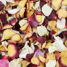 MIXED ROSE PETAL CONFETTI - BIODEGRADABLE - MIXED COLOURS