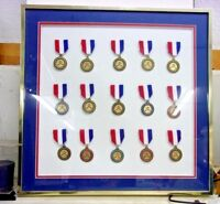 Vintage Custom Framed and Matted Collection of NRA MEDALS - 15 medals REDUCED