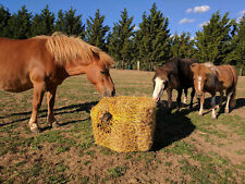 SLOW FEED HORSE HAY BALE NET, SLOW FEEDER FOR LARGE SQUARE BALE - GOLD OR GREEN