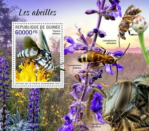 Guinea Bees Stamps 2021 MNH Neon Cuckoo Bee Insects 1v S/S