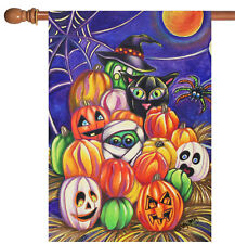 New listing New Toland - Pumpkin Pigpile - Colorful Halloween Witch Ghost House Flag