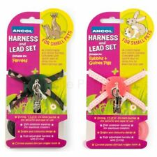 More details for ancol ferret rabbit guinea pig harness and lead set adjustable small animal