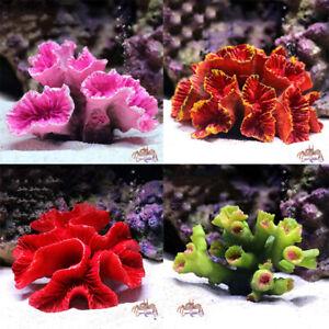 Simulation Resin Coral Reef Aquarium Ornament DIY Landscaping Fish Tank Decor