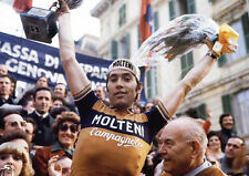 Eddy Merckx Tour de France Cycling Legend Poster #3 POSTER