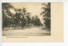 Verazcruz—Avenida de la Libertad RARE Antique UDB <1908
