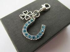 Wedding Gift for Bride Something Blue Crystal Horseshoe & Lucky Clover Charm