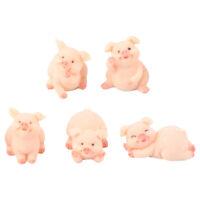 5pcs Cartoon Pig Adornments Party Favors Microlandschaft Decors for Bonsai