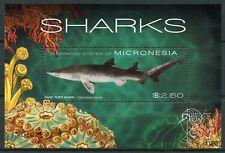 Micronesia Sharks Stamps 2011 MNH Sand Tiger Shark Marine Animals 1v S/S