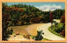 Postcard  Greeting From New Found Land PA