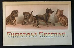 CHRISTMAS GREETING HOLD-TO-LIGHT POSTCARD WITH DOGS & CAT ANTIQUE POSTCARD-c631