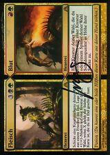 Carne // sangre signed   bollos // Blood   nm   Dragon 's Maze   ger   Magic mtg