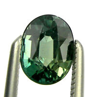 0.69 carat Oval 6x4mm Green Color Natural Australian Fancy Parti Sapphire, OPS17