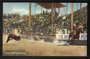"""1941 World Champion """"Chester Byers"""" Roping Steer Postcard"""