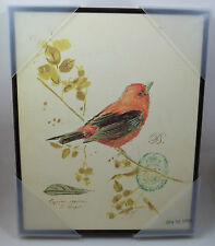 """Orange Finch Bird Letter Writing Stamped Feather Wall Picture 10""""w x 12""""h #52"""