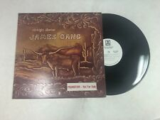 JAMES GANG Straight Shooter LP ABC ABCX-741 US 1972 VG++ WHITE LABEL PROMO 3F