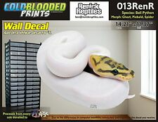 Removeable Wall Decal Snake Ball Python Cold Blooded Prints Sticker 013RenR