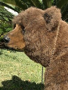 """23""""x 18""""x 20"""" Mohair Realistic Bear Cub """"OTTO"""" by Michael J. Woessner"""