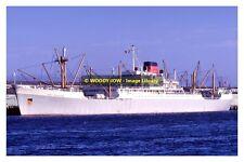 rp11533 - Port Line Cargo Ship - Port Nicholson , built 1962 - photo 6x4