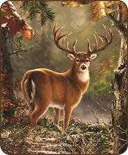 "Buck In Woods Whitetail Deer Queen Size 79"" X 96"" Soft Medium Weight Bed Blanket"