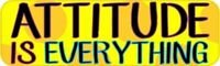 10in x 3in Attitude Is Everything Vinyl Bumper magnet  magnetic magnets