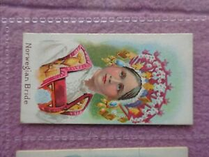 TADDY - NATIVES OF THE WORLD # NORWEGIAN BRIDE - SUPER GRADE - 6 CLOSE UP PHOTOS
