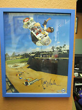 Tony Hawk Signed/Framed Half Pipe Action in Blue 16x20 Photo Steiner