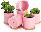 Buymax Succulent Plant Pots 3.1 Inch Ceramic Flower Pot Indoor With Drainage 6