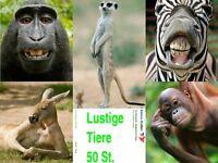 LUSTIGE TIERE: 50-er Tierpostkarten-Set / Ansichtskarten, 5 Motive á 10 Stück