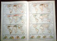 Carta geografica antica PLANISFERO CEREALI TUBERI OLIVO De Agostini 1927 Old map