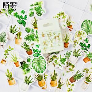 45PCS Mint Plant Adhesive Stickers For Nature Lover Phone Laptop Album Décor🌿🍀