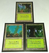 3x FOREST LAND BETA COLLECTOR'S EDITION MAGIC THE GATHERING MTG LP