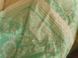 POTTERY  BARN  DORM  TWIN  SIZE  DUVET  COVER  GREEN & WHITE  SWIRLY PAISLEY