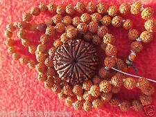 ENERGIZED Original Face 14 Mukhi Rudraksha Nepal Bead, 6mm 108 Beads Jap Mala