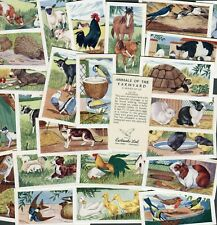 "EWBANKS 1960 SET OF 25 ""ANIMALS OF THE FARMYARD"" TRADE CARDS"