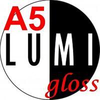 80 sheets 250 gsm A5 GLOSS 2 SIDED LASER PRINTER PAPER - LASER - DIGITAL - CRAFT