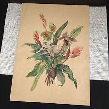 """Antique 1800s Original Colored Pencil Sketch Flowers - A. Jacobi 13.25"""" x 18.25"""""""