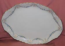Hutschenreuther Racine Fontaine bleu Goldrand Servierplatte 39x28  Platte 12454