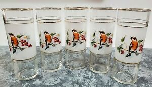 5-VTG TOM COLLINS GLASSES☆Robin & Berries☆Frosted☆Gold Trim/Bands☆EUC☆Rare Find☆