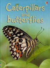 Caterpillars and Butterflies (Beginners) (Usborne Beginners) by Stephanie Turnbu