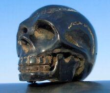 Schädel skull  Büffelhorn geschnitzt  !