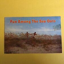 Fun Among The Sea Oats Unposted Postcard