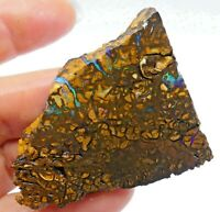 Australian OPAL ROUGH OPAL Koroit/Yowah Solid Natural Unpolished Lapidary 9783