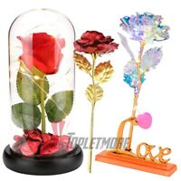 US Rose Flower In Dome Glass LED Night Light Valentine's Day Xmas Decor Gift