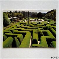 Ashcombe Maze Shoreham Hedge Rose Maze Gardens & Tea Rooms Postcard (P483)